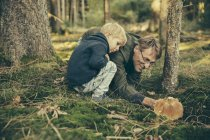 Зрелый мужчина собирает грибы в заливе с маленьким мальчиком — стоковое фото