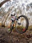 Motociclista da montanha dirigindo na floresta — Fotografia de Stock