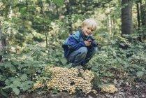 Lächelnde junge mit Kamera n Wald — Stockfoto