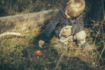 Little boy poking a fly agaric in forest — Stock Photo
