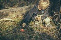 Niño, meter un agárico de mosca en bosque - foto de stock