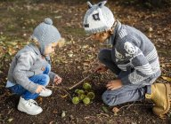 Two boys with collected sweet chestnuts — Stock Photo
