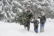 Austria, Altenmarkt-Zauchensee, father with two sons carrying Christmas tree in winter landscape — Stock Photo