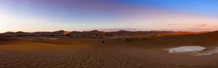 Намібія, Naukluft Національний парк, Наміб, Sossusvlei, піщані дюни в Vlei мертвий у вечірній час — стокове фото