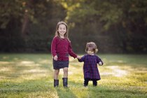 Two little girls walking hand in hand on a meadow — Stock Photo