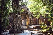Камбоджа, Siem Reap, храм Ангкор Тома денний час — стокове фото