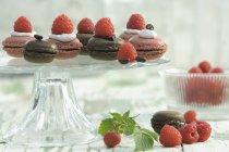 Малини macarons і шоколад macarons на стенді торт — стокове фото