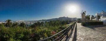 Іспанія, Майорка, Пальма, історичного вітряний млин Жонке́ Es в квартал Санта-Каталіна — стокове фото