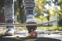 Cropped view of boy with skateboard in autumnal park — Stock Photo