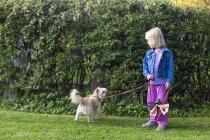Девушка, стоящая на лугу с собакой — стоковое фото