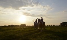 Young women riding in field at sunset — Stock Photo