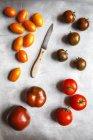 Tomates frescos coloridos - foto de stock