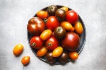 Colorido tomates en placa - foto de stock