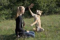 Молода жінка, приборкання її собака на луг — стокове фото