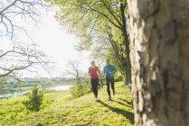 Mature couple jogging in park — Stock Photo