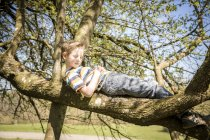 Boy relaxing on a branch at sunlight — Stock Photo