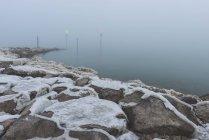 Німеччина Тургау Altnau, Боденське озеро, порт вхід в ранок мряка — стокове фото