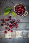 Cerezas ecológicas y cesta - foto de stock