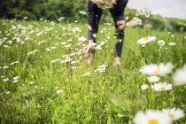 Donna fiori di raccolto nel prato durante il giorno — Foto stock