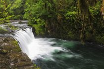 USA, Oregon, Contea di Hood River, Columbia River Gorge, Lower Punch Bowl Falls — Foto stock