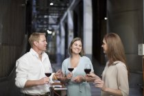 Three people tasting wine in cellar having a discussion — Stock Photo