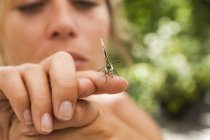 Nahaufnahme eines Schmetterlings an der Hand einer Frau — Stockfoto