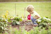 Little girl crouching in the garden watering plants — Stock Photo