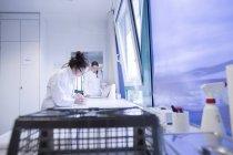 Assistants de laboratoire ciblés vérification des échantillons — Photo de stock