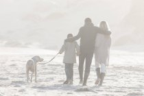 Back view of family walking on the beach with dog at beautiful nature — Stock Photo