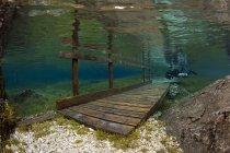 Operatore subacqueo maschio e Ponticello sommerso nel lago Gruener vedere — Foto stock