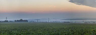 Vue d'automne brumeux lever de soleil à Koenigslutter, Basse-Saxe, Allemagne — Photo de stock