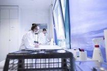Assistenti di laboratorio il controllo di campioni di sorridente — Foto stock