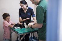 Garçon avec Border Collie sur la table d'examen chez le vétérinaire — Photo de stock