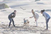 Drei Freunde spielen am Strand mit Hund in schöner Natur — Stockfoto