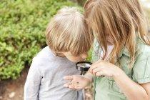 Мальчик и девочка смотрят через лупу на жука — стоковое фото
