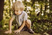 Мальчик карабкается по упавшему дереву в лесу трогая мох — стоковое фото