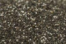 Cumulo di semi di chia su sfondo sfocato — Foto stock