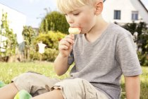 Pequeño niño sentado en el prado en el jardín comiendo helado lolly - foto de stock