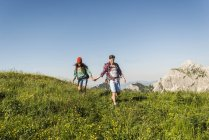 Austria, Tyrol, Tannheimer Tal, young couple walking hand in hand on alpine meadow — Stock Photo