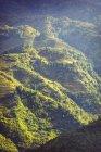 Vietnã, Sa Pa, campos terraced durante o dia — Fotografia de Stock