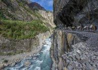 Nepal, Annapurna, Hongde e visão de falésias durante o dia — Fotografia de Stock