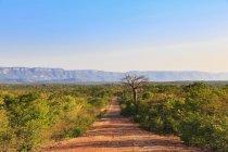 Південна Африка, Зімбабве, грунтовій дорозі через краєвид денний час — стокове фото