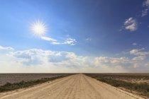 Вид на пустой гравийной дороге, Национальный парк Этоша, Намибия — стоковое фото