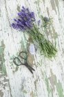 Bunch of fresh lavender flowers on wood, scissors and string — Stock Photo