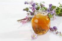 Vaso de miel de Azahar con nido de abeja y flores sobre fondo blanco - foto de stock