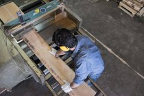 Человек в перчатках и слух защиты положить деревянную доску на промышленную циркулярную пилу на заводе — стоковое фото