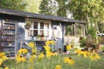 Cobertizo de jardín y flores sobre hierba - foto de stock