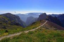 Ruivo Португалії, Мадейра, Піко, туристичний шлях в горах — стокове фото