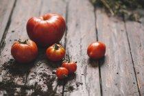 Pila de tomates con tierra sobre fondo de madera - foto de stock