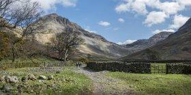 Angleterre, Cumbria, Lake District, vallée de Wasdale, Great Gable, grimpeurs — Photo de stock